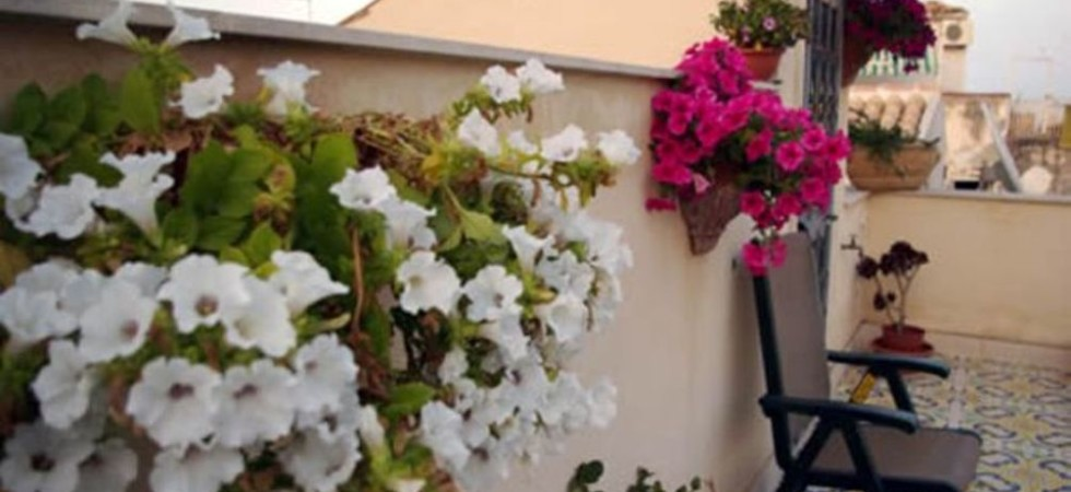 Bed and breakfast for sale Ortygia